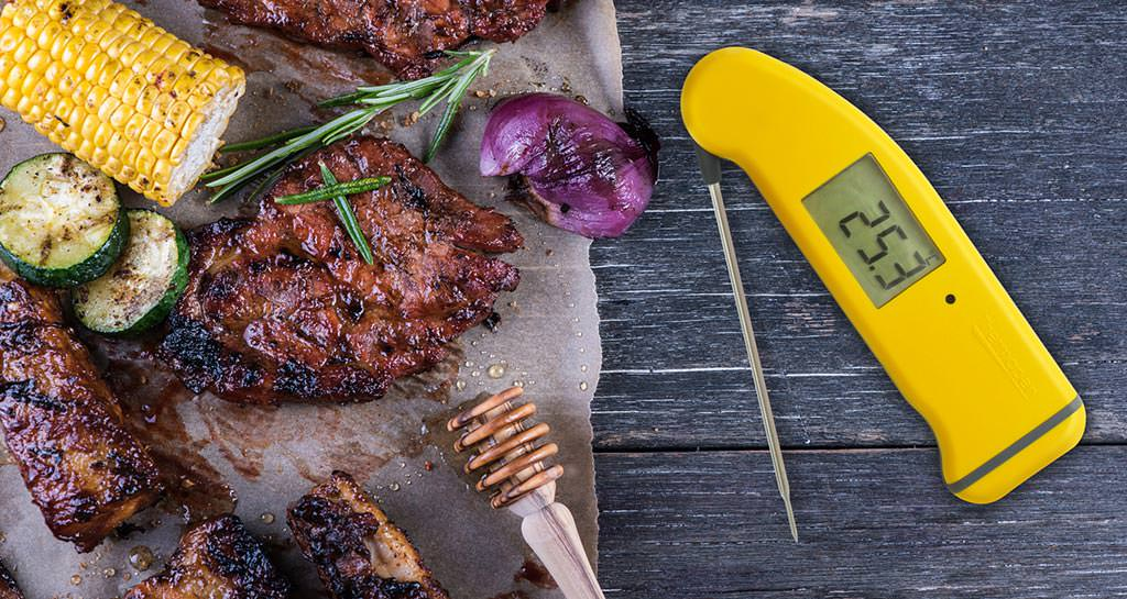 Why Use a Thermapen Thermometer?