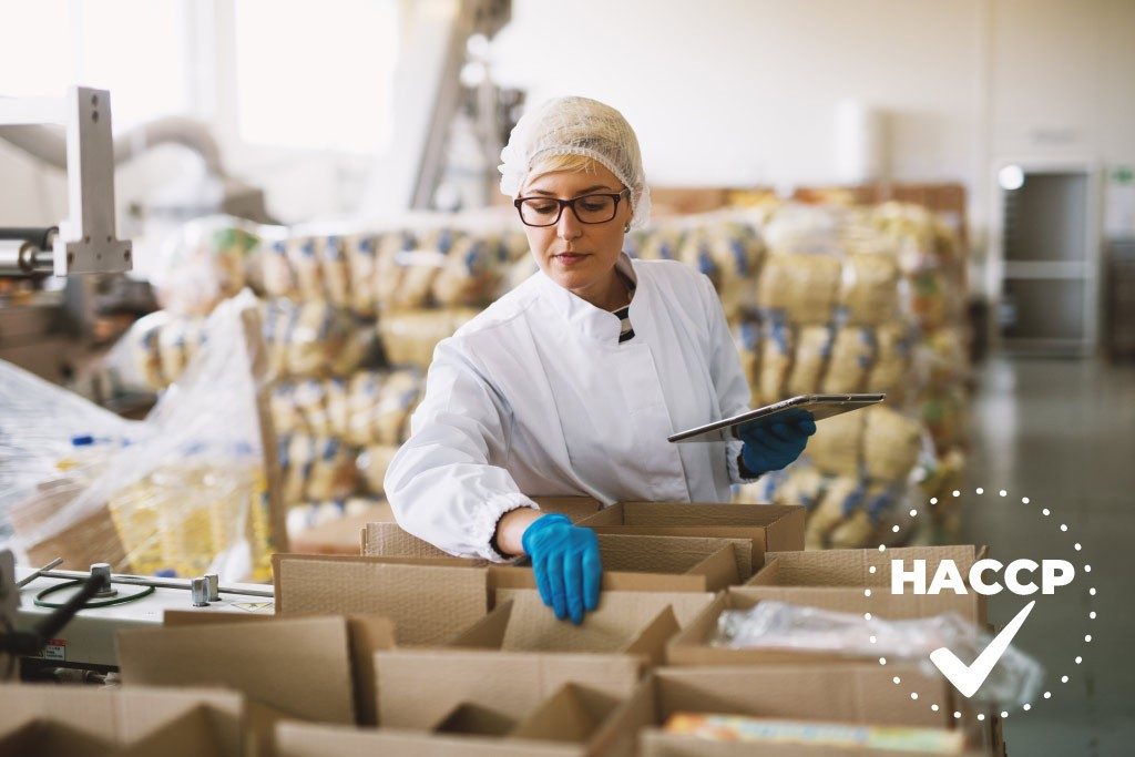 5 Essential Temperature Solutions for Your HACCP Plan