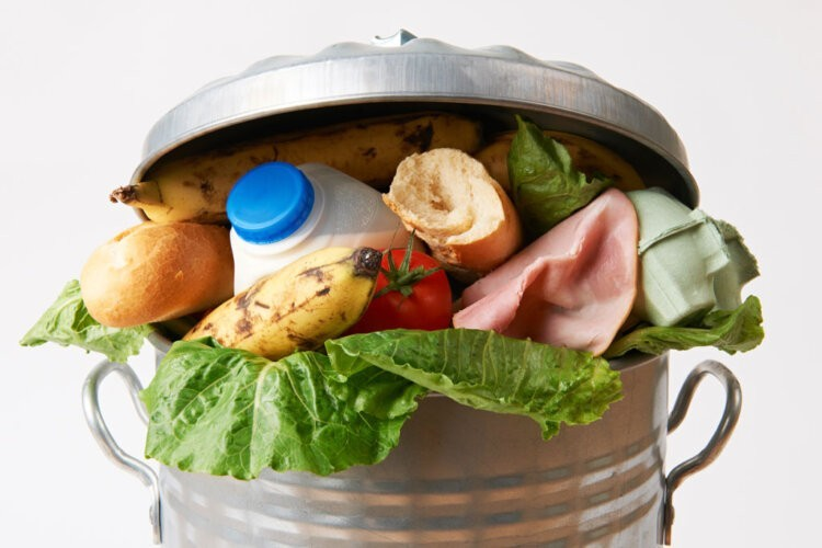 5 Temperature Tips for Reducing Food Waste